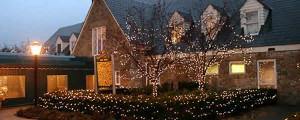 Glen-Oaks-holiday-lights